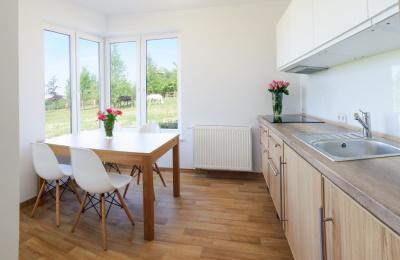 Küche im Apartment für betreutes Wohnen in Polen
